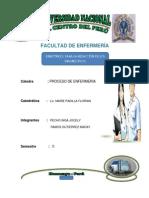 Monografia Pae