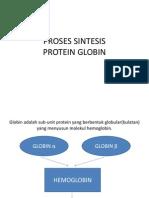 Proses Sintesis Globin