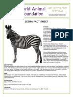 PDF Zebra