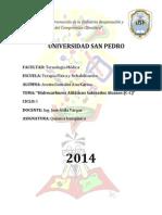 INFORME DE QUIMICA ORGANICA 2.docx