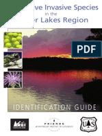 Superior NF/Friends BWCAW Invasive Species Brochure