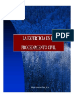 7 Experticia y Procedimiento 119-174