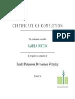 professional dev workshop