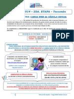 Manual de Ayuda Carga Cedula Censal