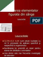 Numărarea Elementelor Figurate Din Sânge Leucocite
