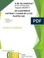 Frutos no climatericos