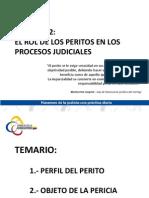 Modulo 2 Perfil Del Perito y Objeto de La Pericia m. Fernanda Roman y Pilar Chiriboga