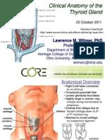Glándula tiroidea humana