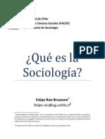Qué es la sociología 2.0 (Junio 2014).docx