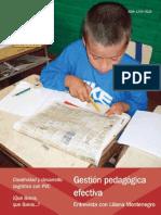 Abse Gestion Pedagogica Efectiva