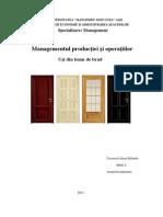Proiect MPO (1)