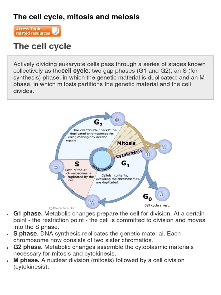 an overview of the processes of mitosis and cytoplasmic cell division Figure 23 figure 24 karyotype table 21 cell division divided into two broad processes cytoplasmic division figure 25 cell cycle chapter 2 mitosis.