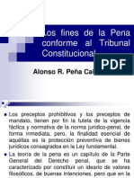 Fines Pena Confor Tribunal