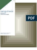 Desarrollo Molecular de Los Vasos Sanguineos