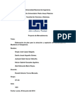 Proyecto Mercadotecnia
