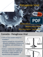 Patogenia Viral