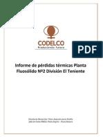 Unidad PRECA Informe