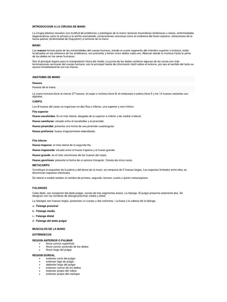Único Anatomía Pulgar Mri Composición - Imágenes de Anatomía Humana ...