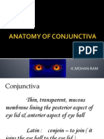 Anatomy of conjunctiva