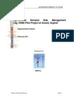 01 Ag Dsm Implementation Report