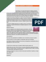 Relajación Antiestrés y Visualización