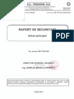 Raport Securitate Public