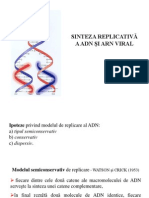 Sinteza Replicativa a ADN-ului Si ARN Viral