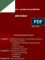 Plan de Afacere Brutarie