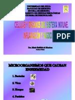 1 CÉLULAS Y ÓRGANOS DEL SIST INMUNO SEPTIEMBRE 2013
