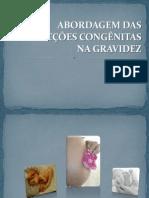 abordagemdasinfecescongnitasnagravidez-100520151241-phpapp02.pdf