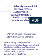 A Hajléktalanság Nemzetközi Ernyőszervezetének Tevékenységei, Eszközrendszere A