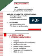 1algebralinealyvectoresaleatorios-100518143318-phpapp01