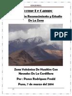 Informe de Campo cordillera y zona volcanica puno