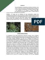 Trabajo Geoquimica.docxPARTE2