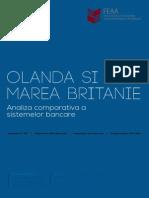 Proiect Moneda si Credit - Olanda vs Marea Britanie