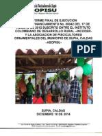 Informe Final Entidad Ejecutora