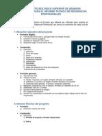 lineamientos_informe practicas profecionales