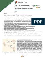 FT Datação Relativa e Absoluta - TPC