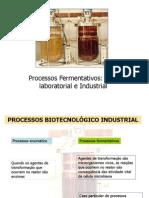 Aula 1- Processos Fermentativo Industrial (2)