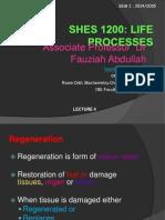 lect4_regeneration21sept2014.ppt