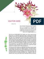 Viator Web 64 En