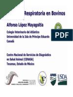 04-bovinos.pdf