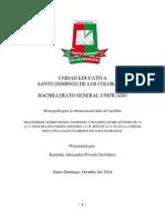 Monografia PDF