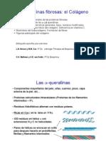 Tema 2. Proteinas Fibrosas(2)