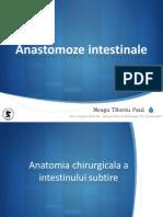 Rezectii Si Anastomoze Intestinale - BSS 12-17