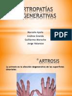 ARTROPATÍAS DEGENERATIVAS