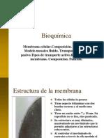 1. Membrana Celular