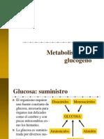 3 Glucogeno