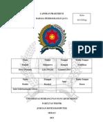 Laporan Tugas Akhir Praktikum Java (Dicky Pratama 1214370216)