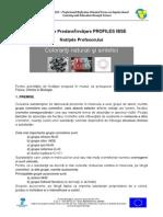 Biro_Claudia_5.pdf